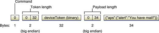 APNS Binary Format